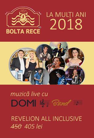 Oferta Revelion 2018 Bolta Rece